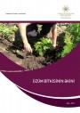 Üzüm bitkisinin əkini